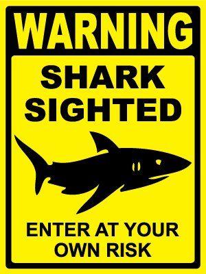 Sharks On Pinterest