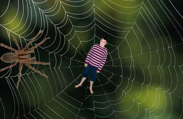 Justin and the Spider