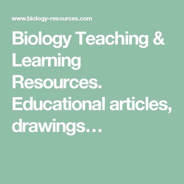 15 best Dylan IGCSE images on Pinterest | Igcse biology, Kid science ...