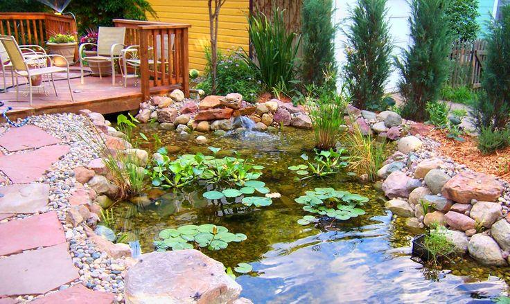 Water Garden Com Gardens Water Water Garden Forward Water Gardens Water Gardens