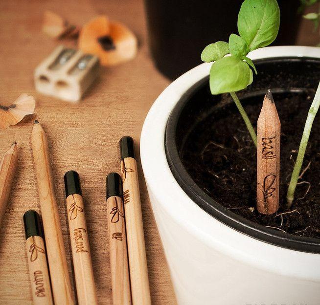 """Дизайнеры из компании Democratech представили карандаши Sprout, которые имеют очень интересную особенность - на месте ластика располагается небольшая капсула с семенами. Вместо того, чтобы выкинуть карандаш, когда он стал совсем маленьким, владелец может вставить деревянный """"огрызок"""" в землю и полить водой. Уже через неделю вас будет радовать зеленое растение. Это может быть базилик, кинза, укроп, мята, петрушка, шалфей, розмарин или тимьян, в зависимости от того, какой карандаш вы выбрали…"""