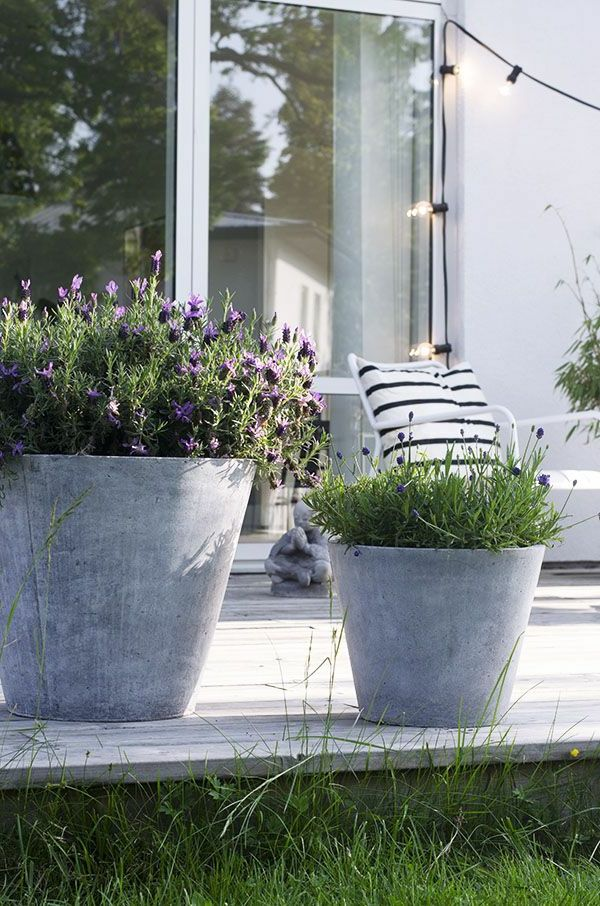 Terrassengestaltung mit Gras