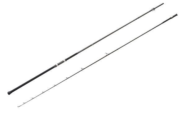 Top 10 Surf Rods