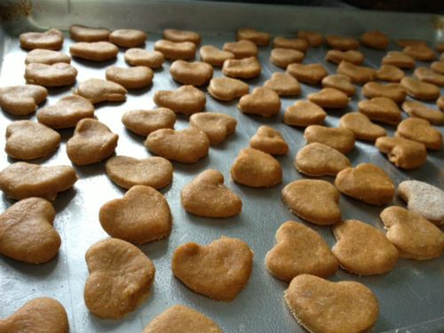 [DIY] Peanut Butter Pumpkin Pooch Treats [homemade dog treats]