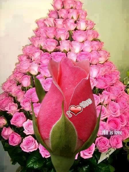 646 best Corazónes y rosas images on Pinterest Rosas rojas, Amor y