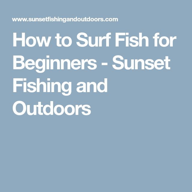 Best 25 saltwater fishing ideas on pinterest tie for Saltwater fishing gear for beginners