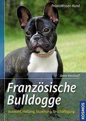 Französische Bulldogge Mix | myFrenchBulldog.de
