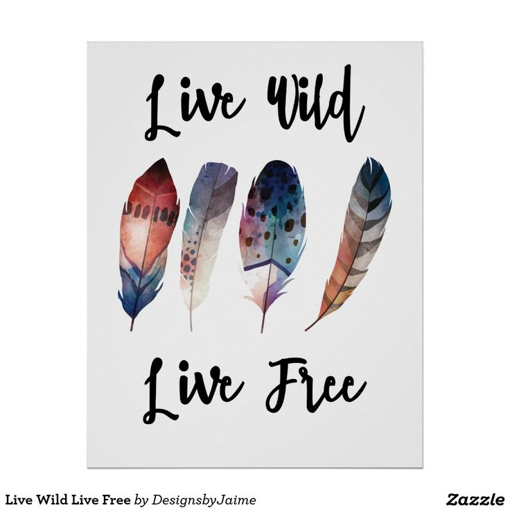 Live Wild Live Free Poster
