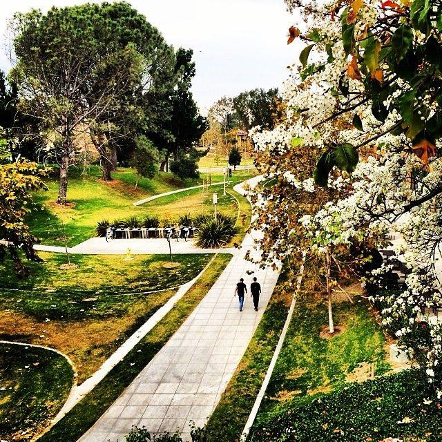 51 best UC Irvine Campus Map images on Pinterest | Campus ... Uc Irvine Campus Life