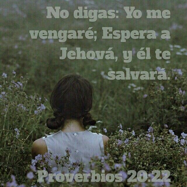 No digas: yo me vengaré; espera a Jehová y Él te salvará. Proverbios 20:22
