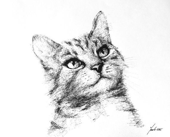 cat painting gift home beuatifull by Braccialeart on Etsy