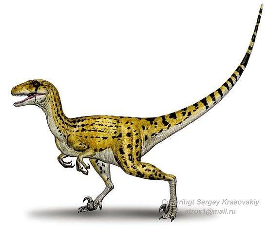 utah raptor - These guys are more dangerous than Deinonychus as they are as tall as a grown man (and 7 meters long). They most likely had feathers, and these things could seriously frighten some children.