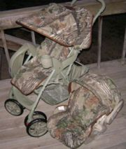 this is perfect. :)    Small Sprouts: Custom Stroller Covers