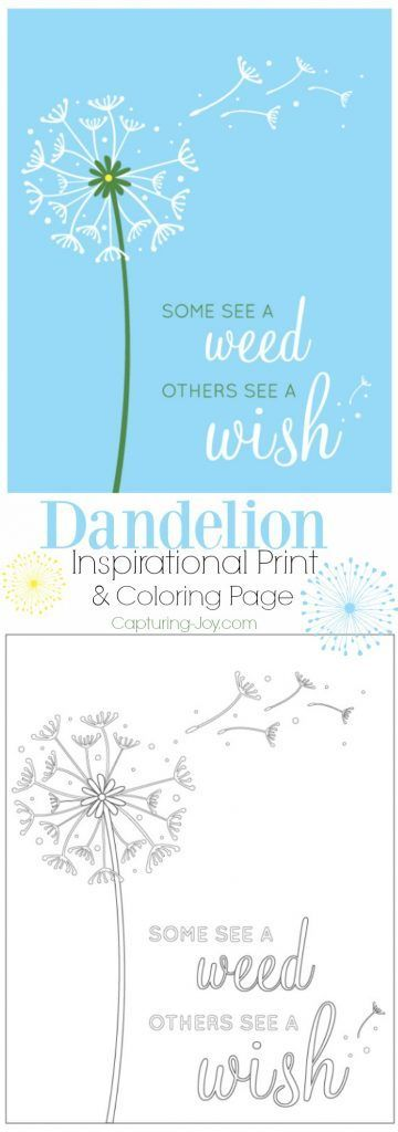 Dandelion Inspirational Print and Coloring Page. A great message to share with your kids and have fun coloring together. | Capturing-Joy.com