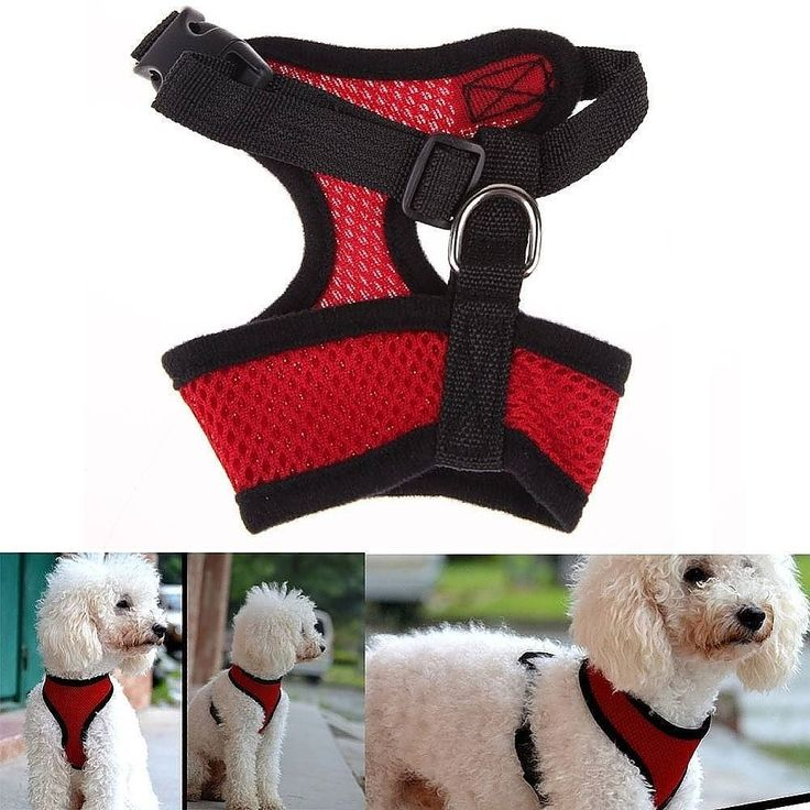 Vest Harness Small  Description:  for puppy and small dog  color: red / green  Size (CM) XS: neck 24 chest 27-38 (chihuahua small yorkshire) S: neck 27 chest 32-45 (chihuahua small pomeranian poodle) M: neck 33 chest 38-52 (pomeranian poodle) L: neck 38 chest 50-70 (schnauzer poodle pekingese) XL: neck 42 chest 57-80 (cocker)  Price Vest Harness Small = 70k  Order via WhatsApp 081910207000 & BBM 74BE013E.  #sayanganjing #anjing #anjingras #dog #doglover #mainananjing #eventanjing…