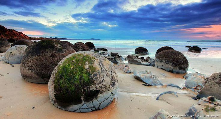 Les plus gros Moeraki Boulders peuvent peser jusqu'à 7 tonnes.
