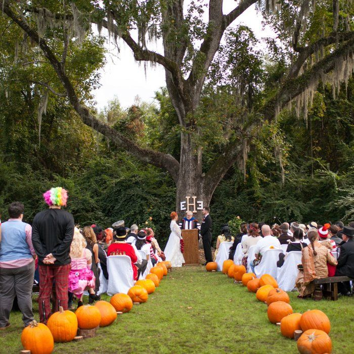 Halloween Wedding Altar: 908 Best Images About Ceremony Ideas On Pinterest
