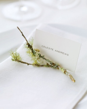 Simple Place Cards with lichen