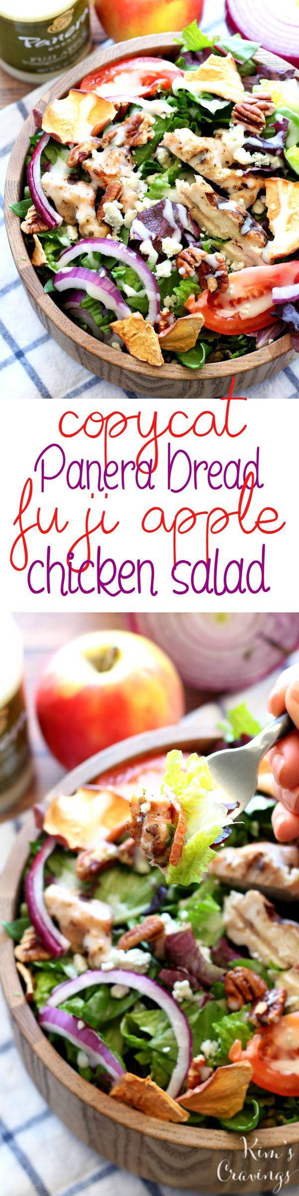 Copycat Panera Bread Fuji Apple Chicken Salad - a fresh flavorful salad that tastes even more delicious than the original! (Apple Recipes Dinner)