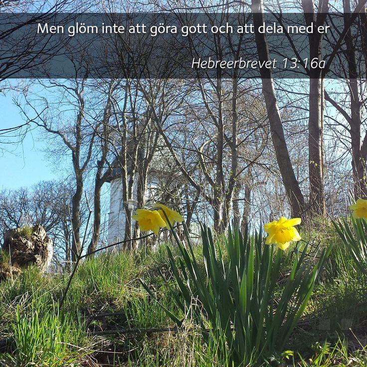Gör gott genom att bidra till församlingens klädinsamling till Dalagärde, fram till 30 april