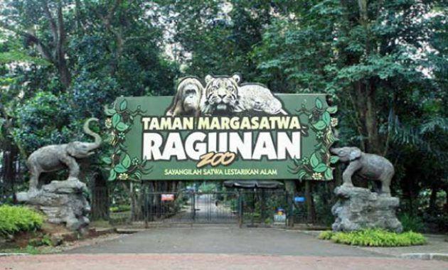 Foto Kebun Binatang Ragunan Jakarta