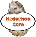 HEDGEHOG CENTRAL.com: Hedgehog Care, Facts, Bedding, Obesity, Handling, Housing, Mites, Ailments, Litter Training, Daily Care Routine, Dental Care, & Vet Care.