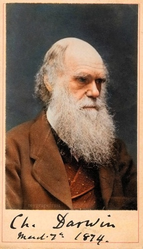 Charles Robert Darwin, FRS (12 February 1809 – 19 April 1882) was an English naturalist and geologist, best known for his contributions to evolutionary theory. His powers of observation and logic sets him apart.