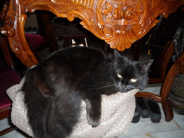 very confortable..