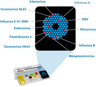 shows the complexity of identifying respiratory pathogens, -our pcr stuff