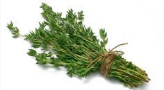9 plantas comestibles y con propiedades medicinales que no deben faltar en tu casa: tomillo