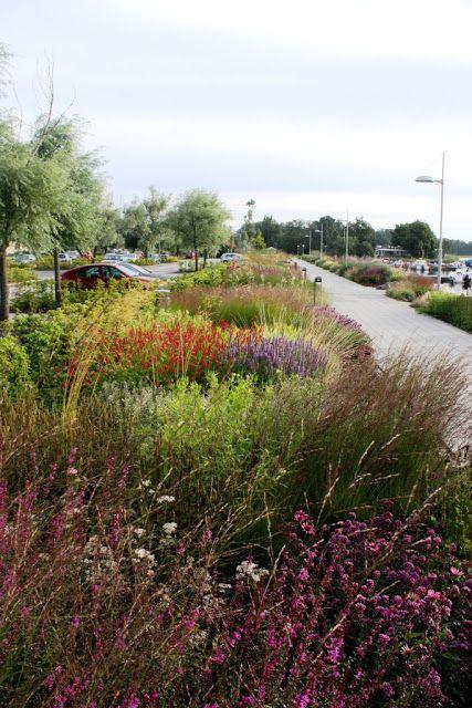 Skogstorpet tr dg rdsdesign gardendesign landscaping for Piet oudolf pflanzen