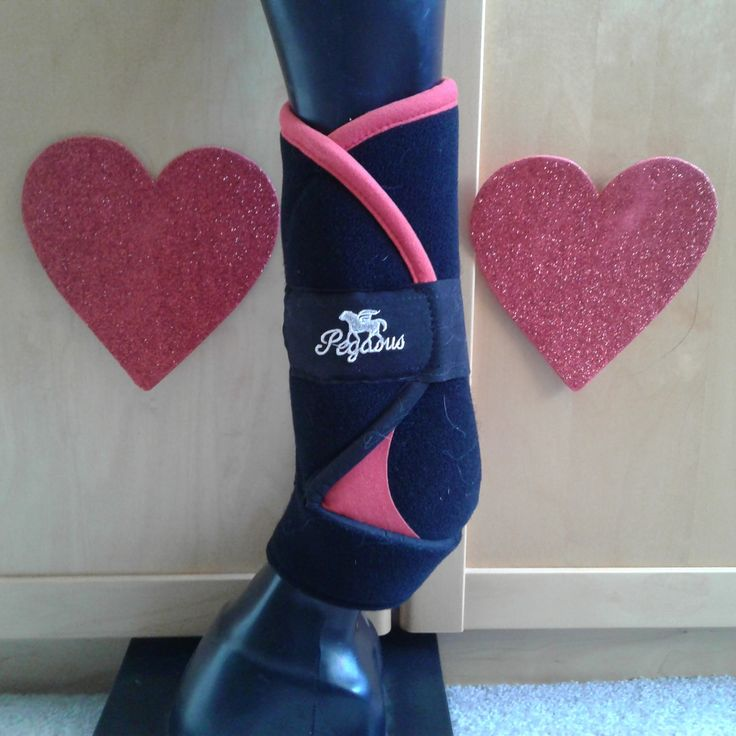 Show your horse how much you love them this Valentines Day with  a pair of Pegasus Air Boots. Protection is every thing!