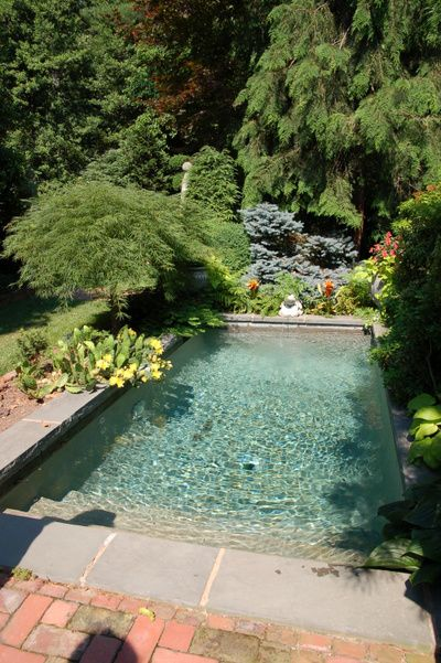 Just a little dipping pool...love.
