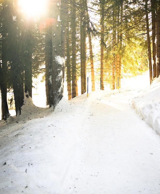 lolitas blogInspiration, Favorite Places, Nature, Winter Walks, Snowy Wood, Winter Wonderland, Cross Country Skiing, Crosses Country Ski, Lolita Blog