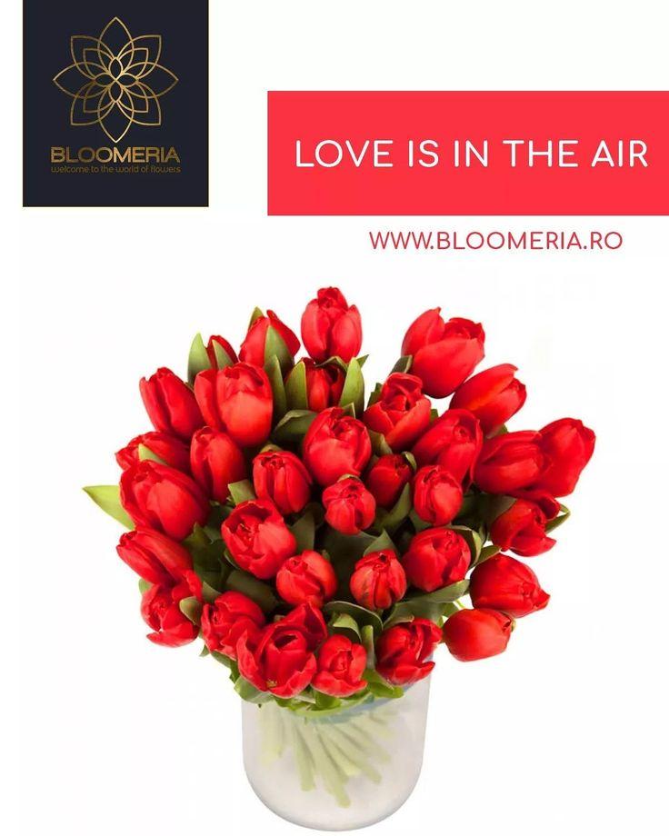 Cele 31 de lalele din acest aranjament formează un dar spectaculos, care poate fi asociat imediat cu cele mai puternice sentimente de dragoste. De un roşu puternic, aceste flori care vorbesc despre venirea primăverii şi despre misterele Orientului pot schimba atmosfera din orice încăpere.