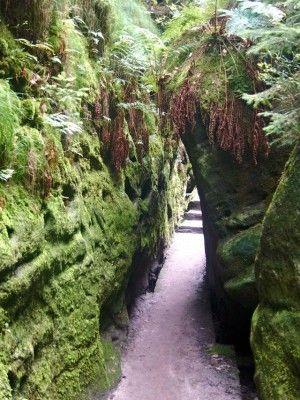 Wandern Sächsische Schweiz Schwedenlöcher