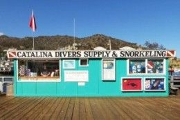 Catalina Divers Supply - Catalina Island, California - Dolphin Quest…