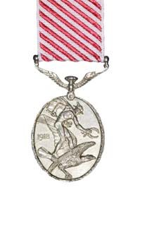 The Air Force Medal reverse view