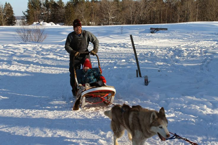 Winterdance Dogsled Tours | Solo Mom Takes Flight