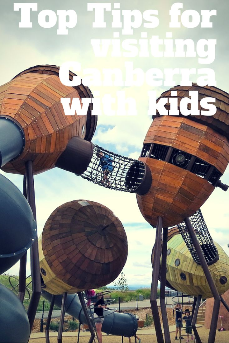 So many great things to do with kids in Canberra - here are a few of our faces