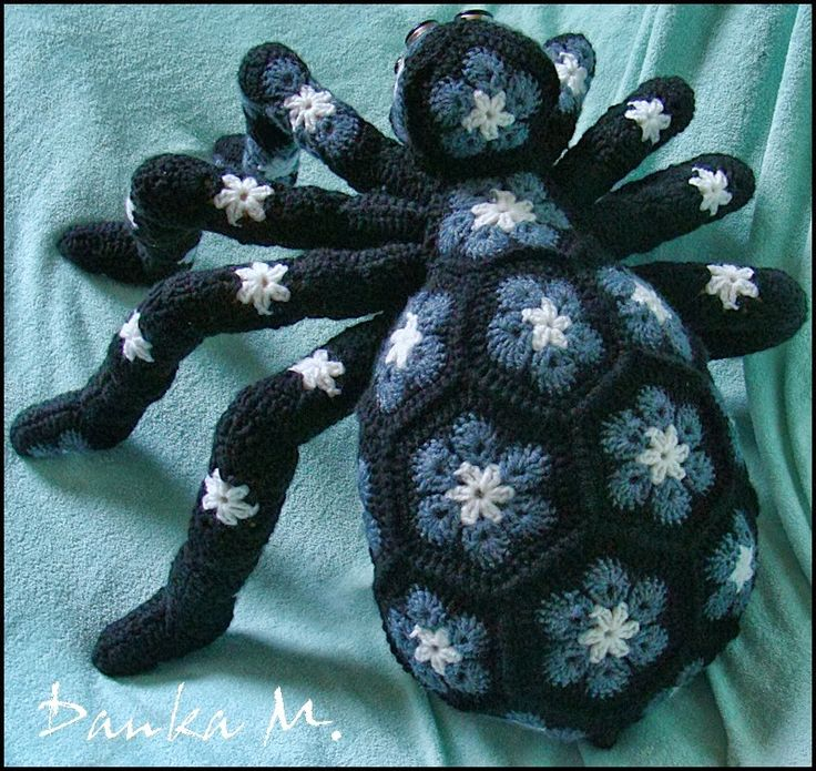 robótkowy ŚWIAT DANKI M.: Pająk ... (Afrykański Kwiat, African Flower)