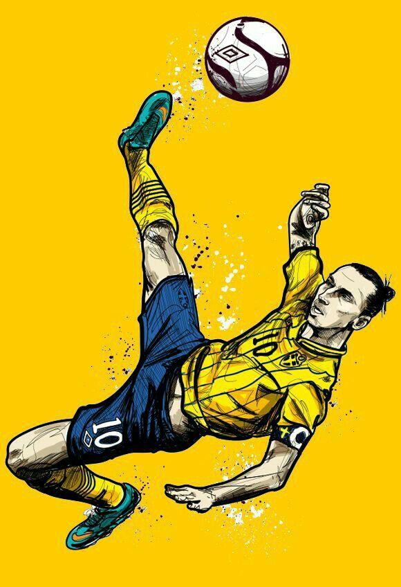 Z. Ibrahimovic / Sweden!