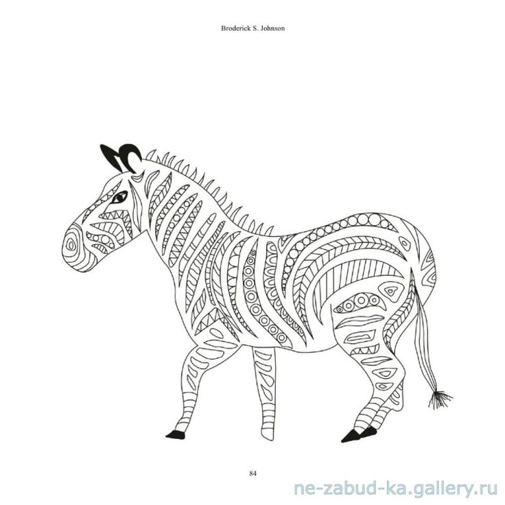 491 Best Coloring Horse Zebra Images On Pinterest
