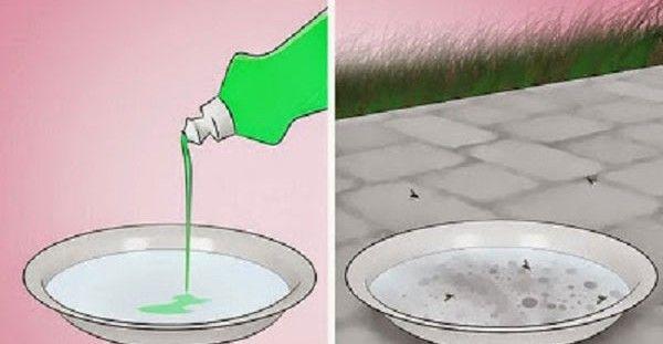8 εύκολα tips για να διώξετε μακριά τα κουνούπια και άλλα ενοχλητικά έντομα του καλοκαιριού!