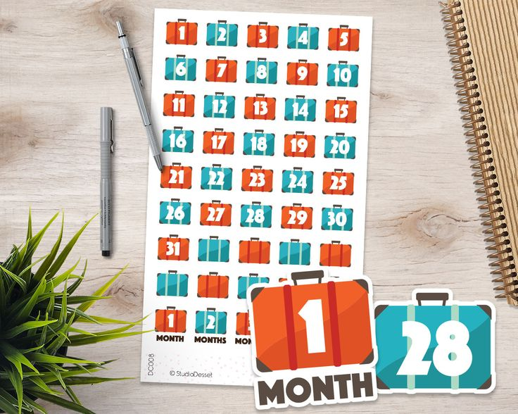 Luggage Stickers, Vacation Countdown Planner Stickers, Travel Numbers, Reminder Holiday Stickers, Suitcase Countdown Sticker DC008 by StudioDessetStickers on Etsy