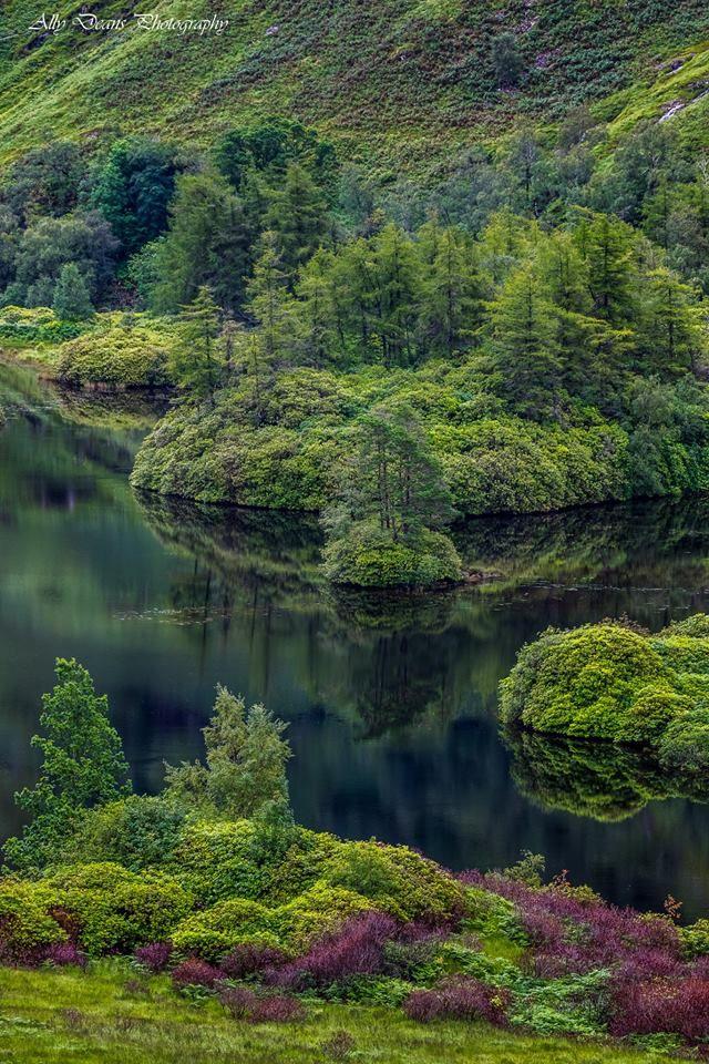 Lush Glen Etive wilderness in the Highlands of Scotland.