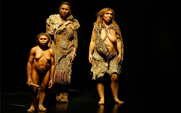 From left, models representing a Homo floresiensis, a Homo Sapiens and a Neanderthal