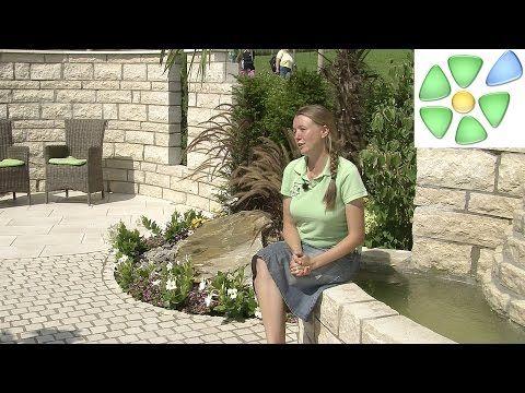 Garten-Video: 🌴 Mediterraner Traumgarten 🌴 mit #Palme, #Toskana-Zypresse 🌴 #Brunnen, Sitzplätzen und Bepflanzung mit Mädchenauge … 💰💰💰 Mehr Tipps und tolle Gutscheine auf  #gutscheingarten.info.