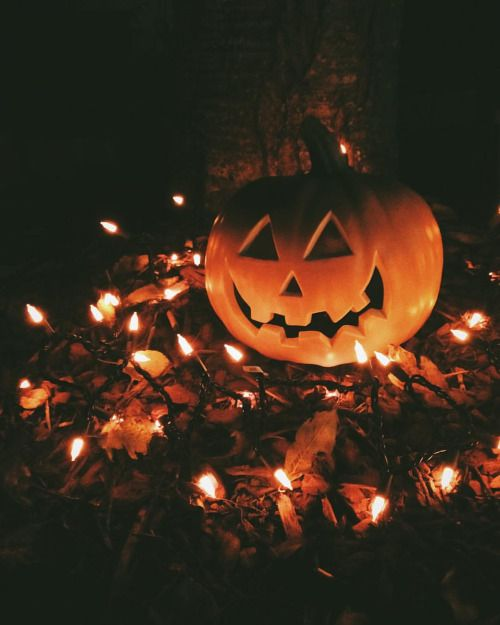 Autumn Thrills and Halloween Chills!