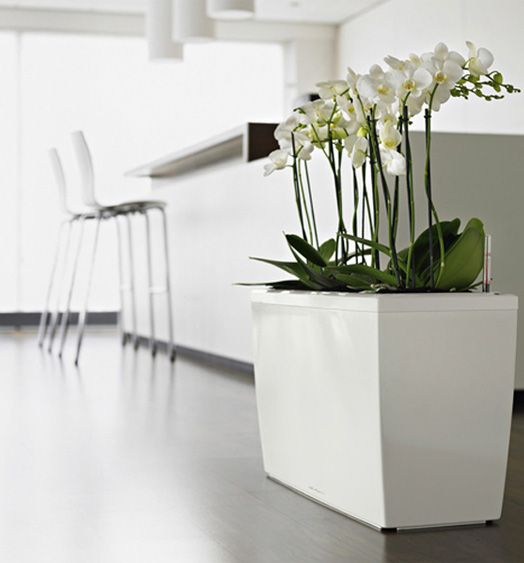 78 best Contemporary Planters images on Pinterest | Contemporary ...